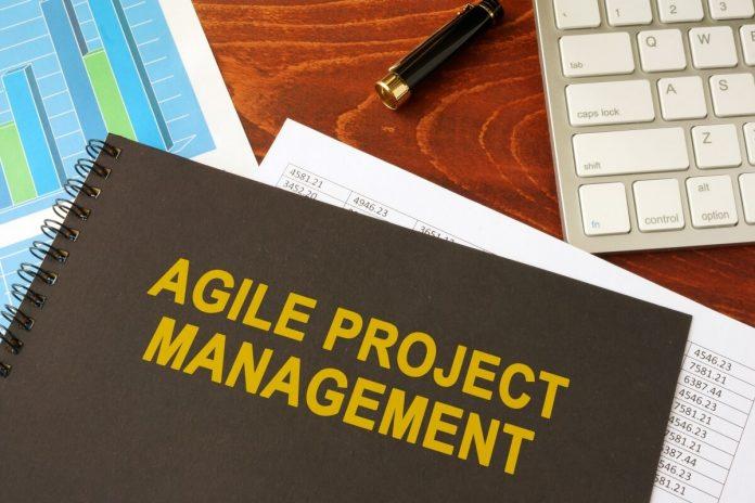 Agilni strateški management in management portfelja (agilnih) projektov